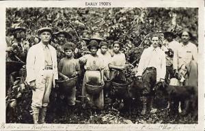 Great Grandfather at his coffee farm. Circa 1900